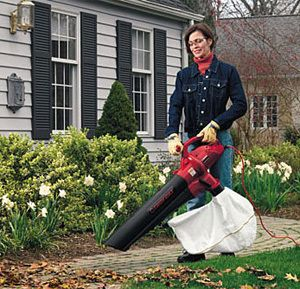 What Are The Advantages And Disadvantages Of Electric Leaf Vacuum Mulcher Vacuums Electricity Outdoor Power Equipment