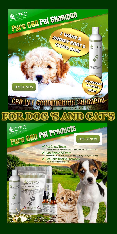 Pets Dog S Cat S Pets Pet Shampoo Food Animals