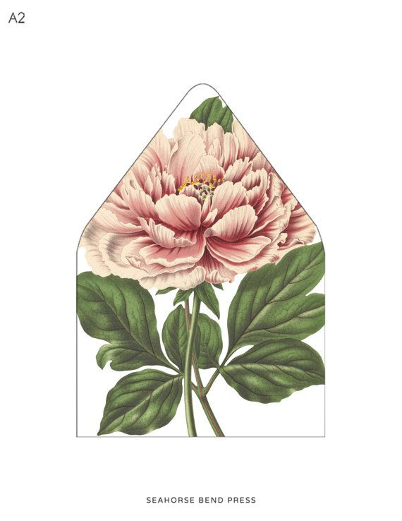 Envelope Liner Template Blush Pink Peony By Seahorsebendpress