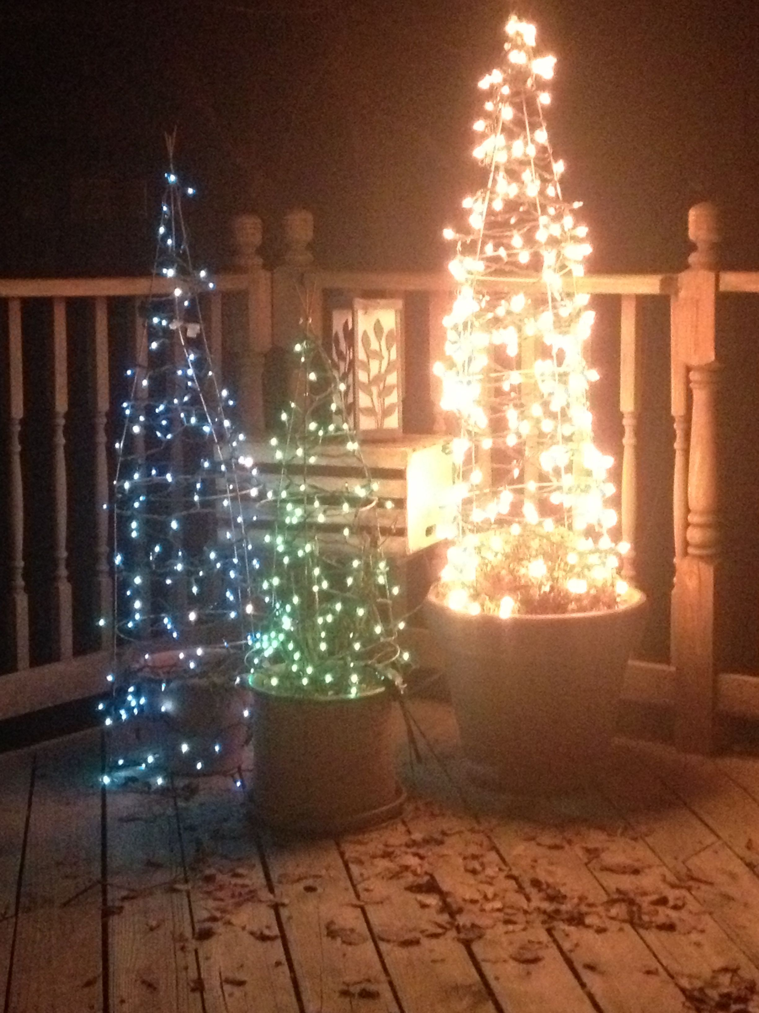 Wrap Christmas lights around your tomato cages and make mini Christmas trees ! & Amazing idea! Wrap Christmas lights around your tomato cages and ...