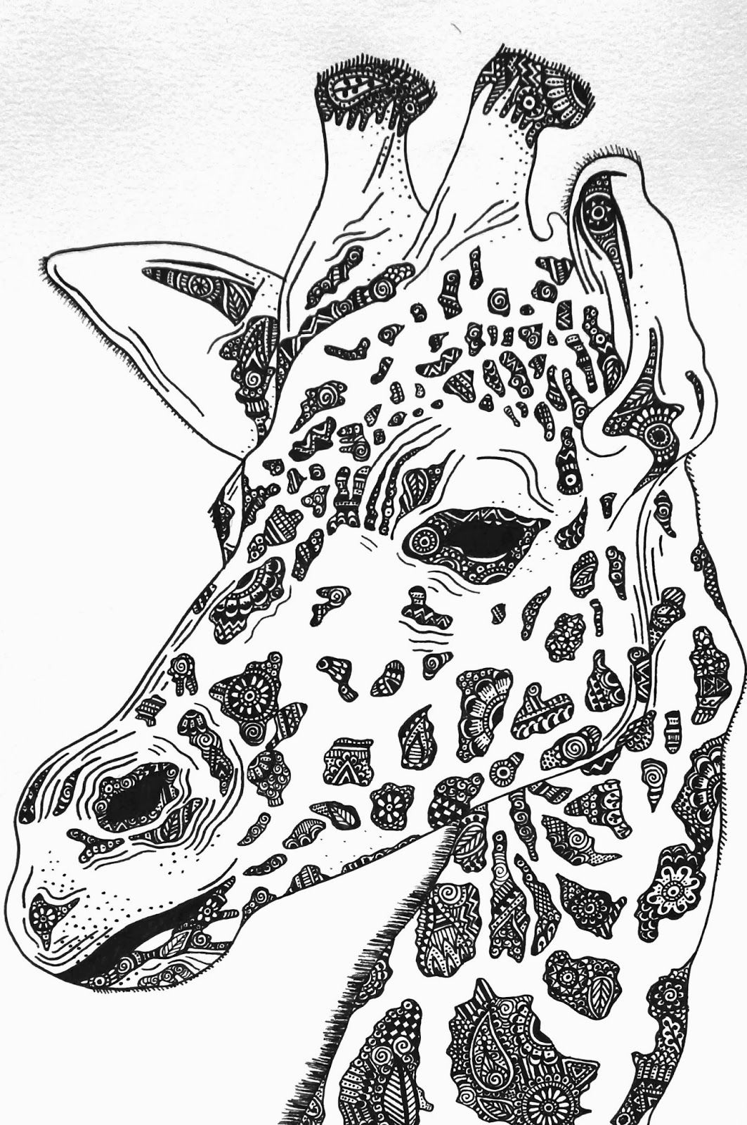 Giraffe drawing // Close up | Giraffe art, Animal coloring ...