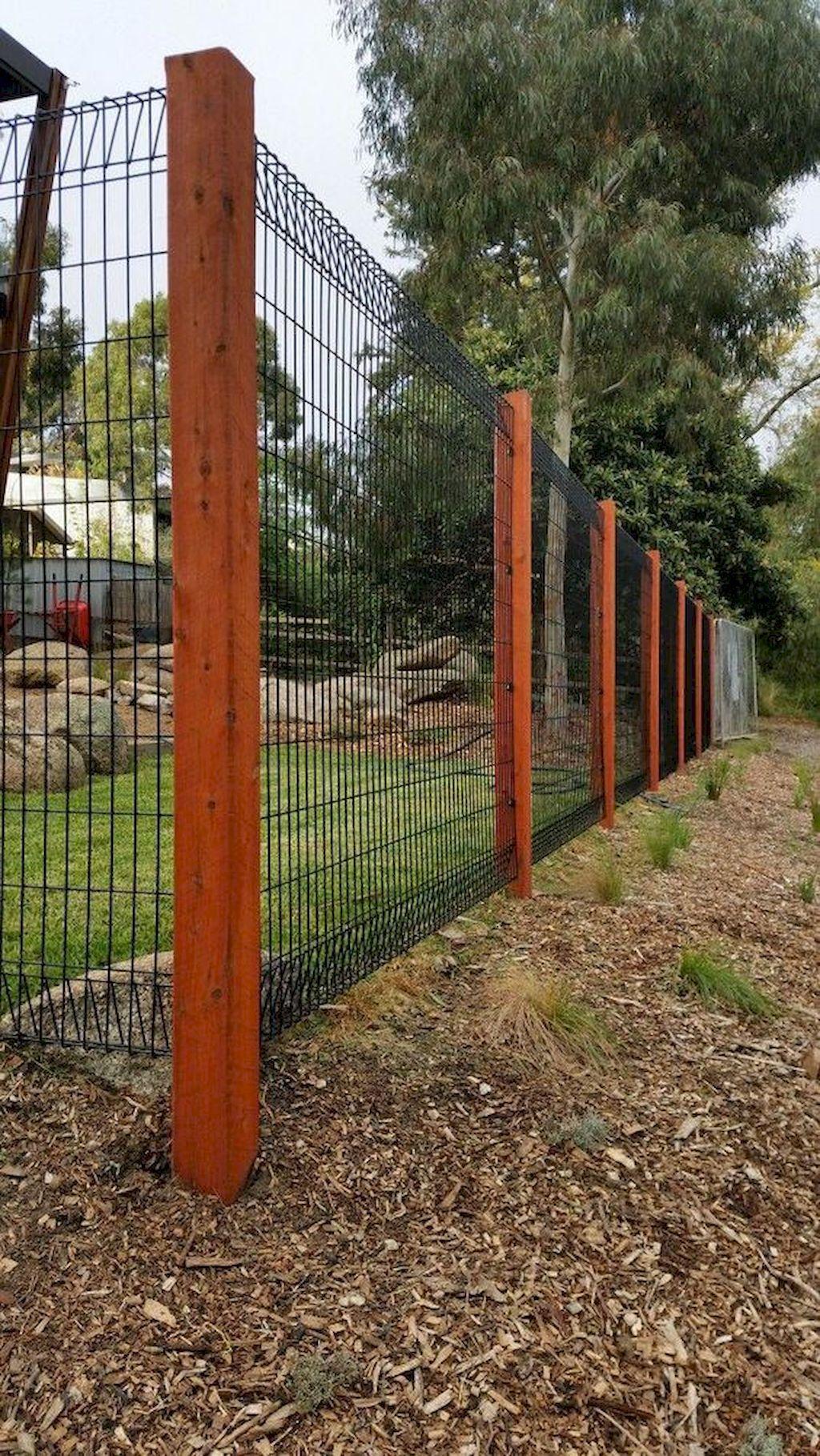 75 Easy Cheap Backyard Privacy Fence Design Ideas Backyard Fence Decor Backyard Fences Backyard Dog Area