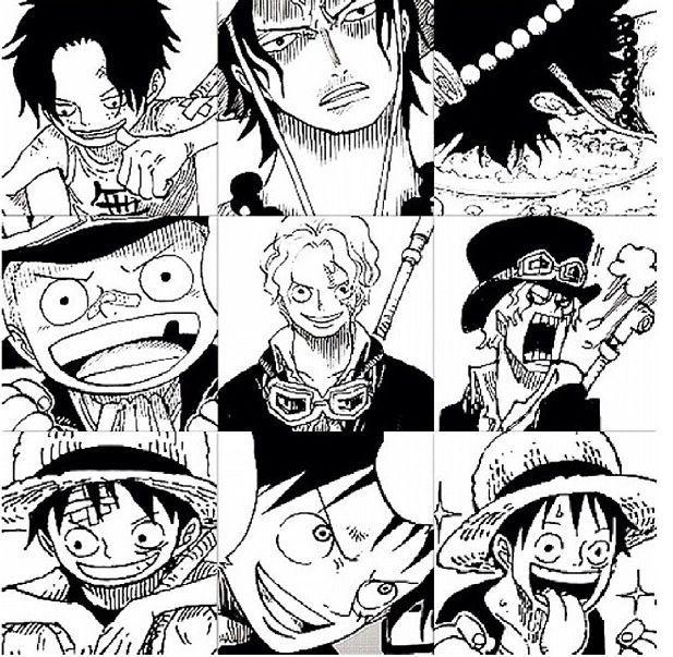 Pin By I Love One Piece On One Piece One Piece Comic One Piece Manga One Piece Ace