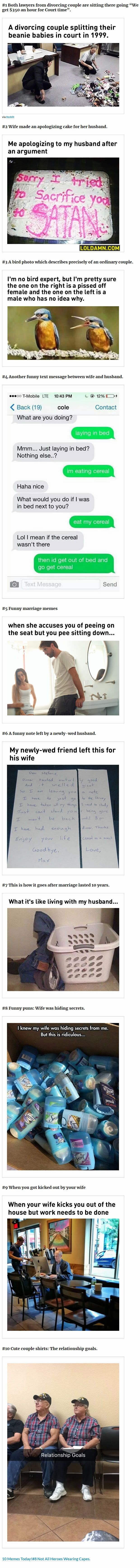 Marriage Memes  A Divorcing Couple Splits Beanie Babies In Court So Awesome Pinterest Funny Hilarious And Funny Pictures