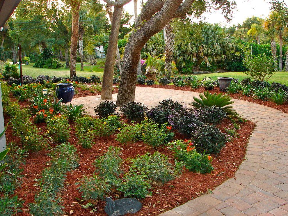 10 Best Landscaping Ideas Small gardens, Cheap