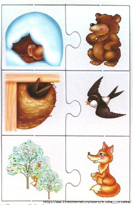Img1 Liveinternet Ru Images Attach C 8 99 271 99271507 Large 4979214 Kto Spryatalsya3 Jpg Preschool Puzzles Animal Flashcards Plant Lap Book