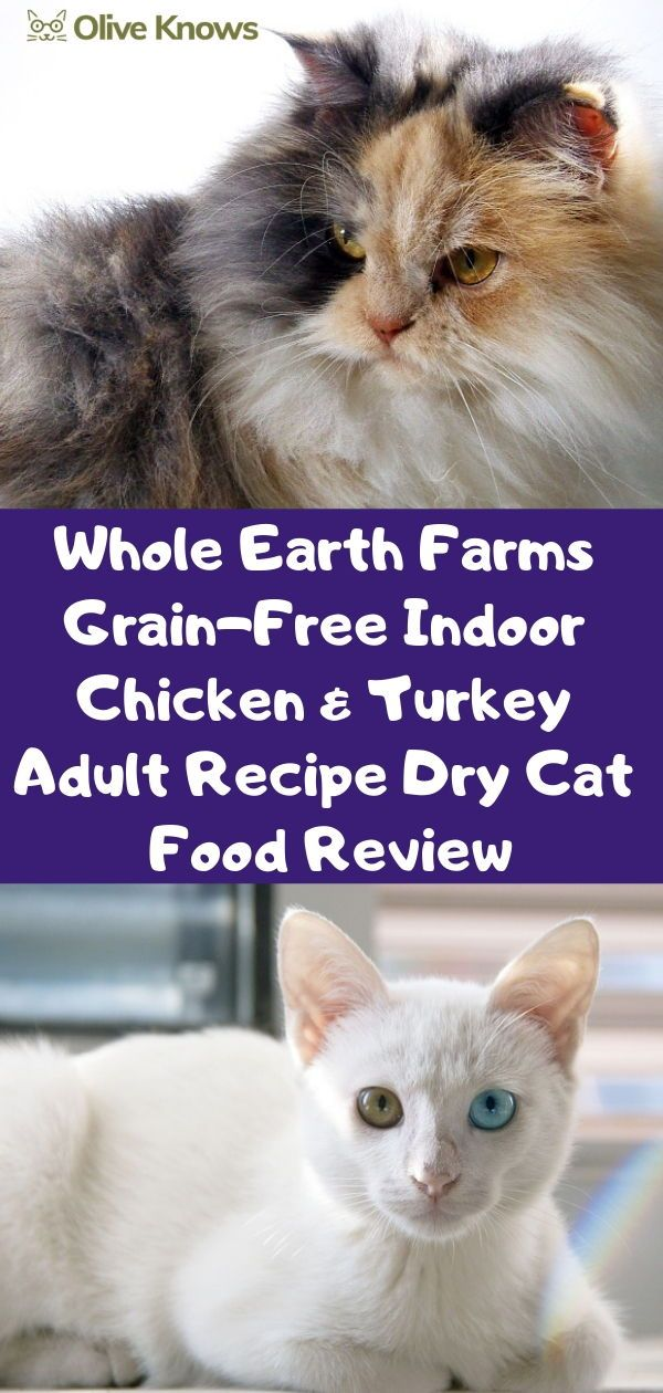 Whole Earth Farms GrainFree Indoor Chicken & Turkey Adult