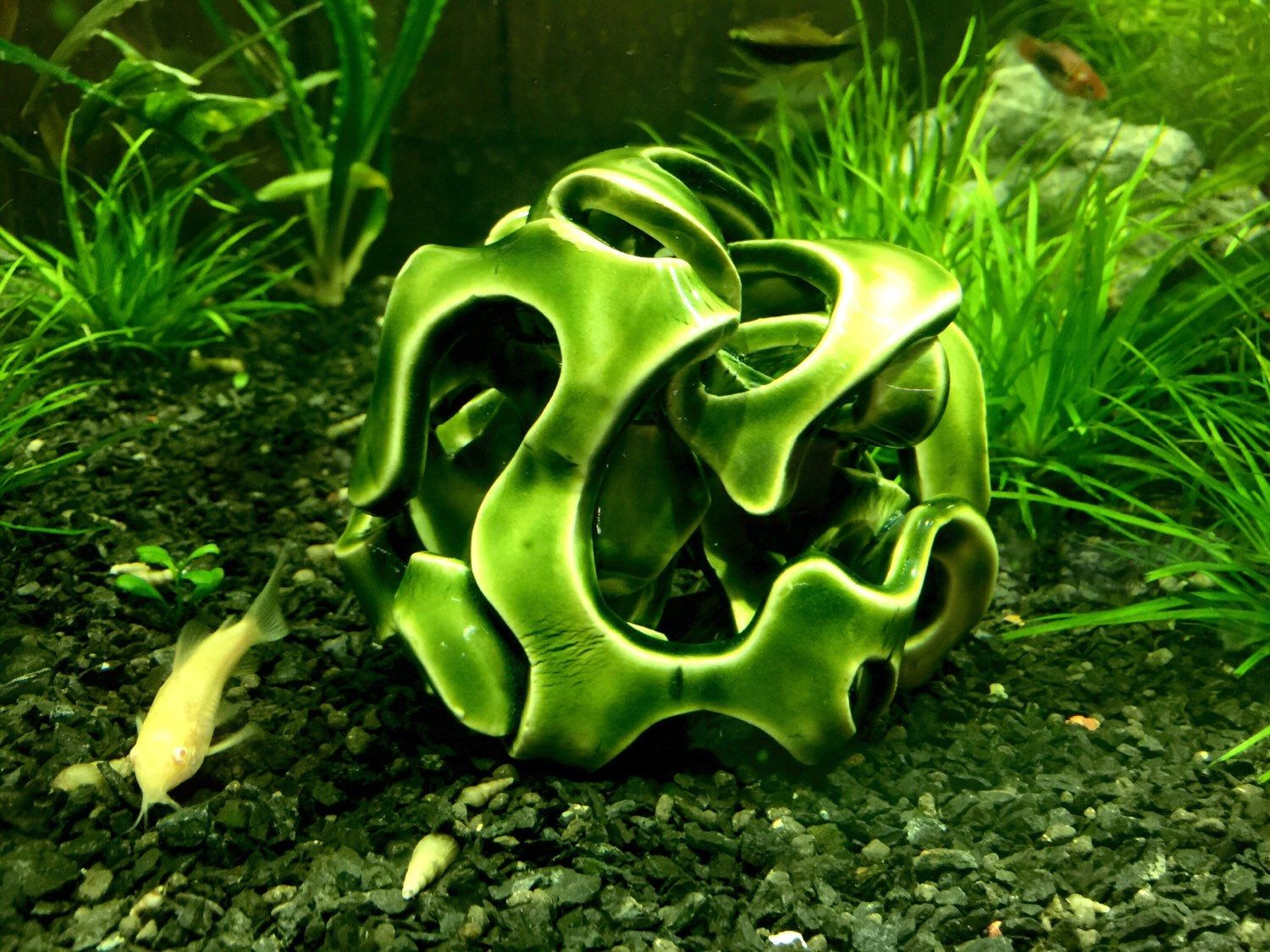Aquarium fish tank online chennai - Aquarium Decoration Aquascape Feng Shui Ceramic Art Baby Fish Protector Fish Tank Ornament Fish Cave Rock By Fishluv
