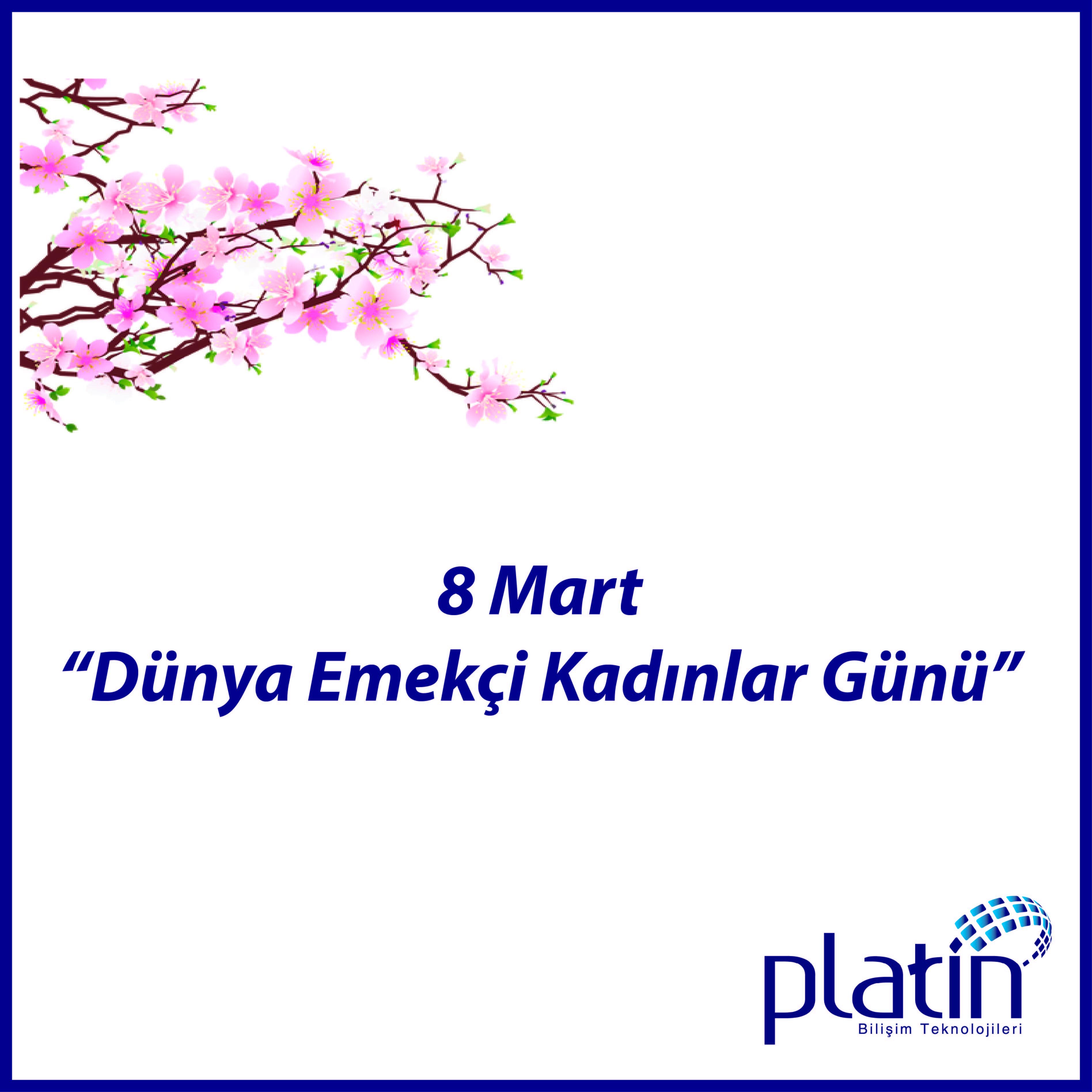 Platin Bilişim 8 Mart'ı kutladı:  https://www.facebook.com/pg/platinbilisimtr/photos/?tab=album&album_id=1468692646475152