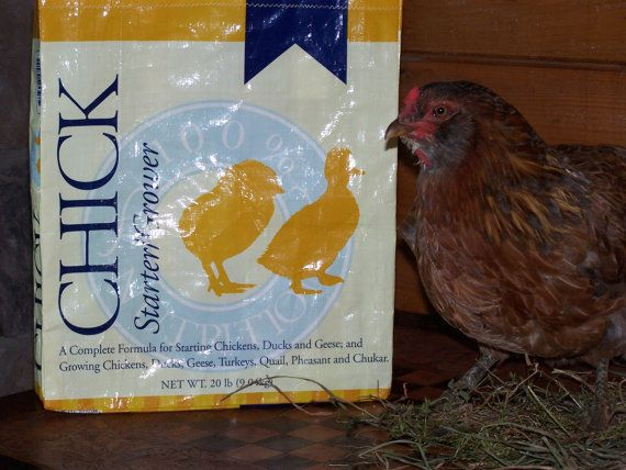 Recycled / Upcycled Chick Feed Bag Market Tote by DancingBearFarm, $7.50