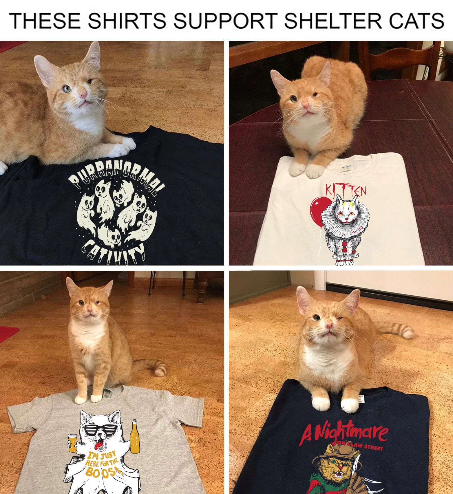 Cute And Funny Halloween Cat T Shirts In 2020 Cute Baby Animals Cute Little Animals Cute Animals