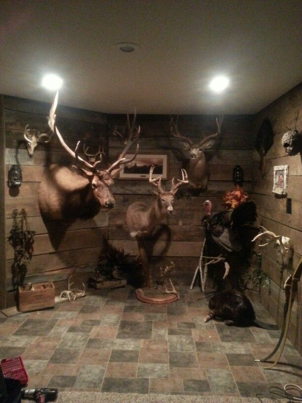 Old Barn Wood Made For A Perfect Trophy Room Tried Post8ng A