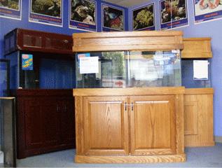 furniture aquarium. 29 Best Home Aquarium Furniture Ideas To Beautify Your Room