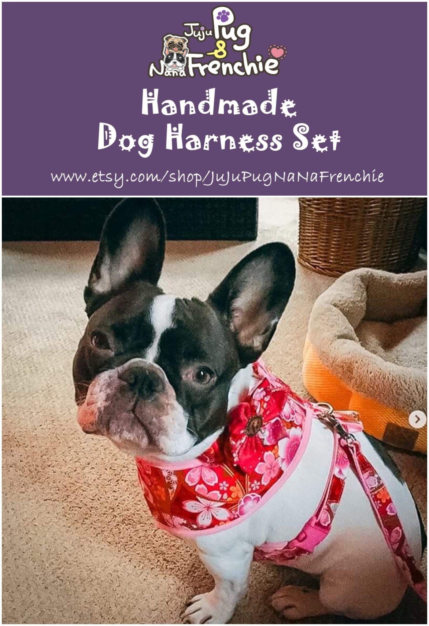 Girl Dog Harness Vest Leash Set Dogharness Dogcollar Dogleash