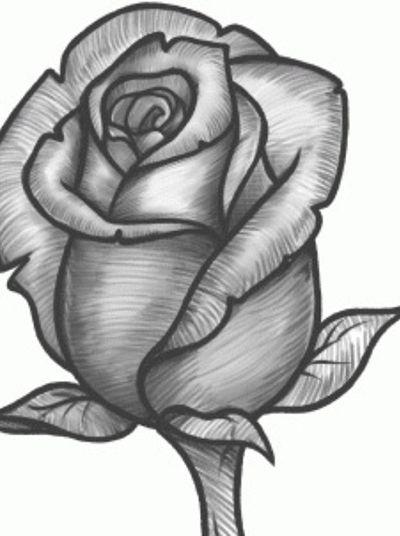 Como Dibujar Una Rosa Rosas Para Dibujar A Lapiz En 2020 Como