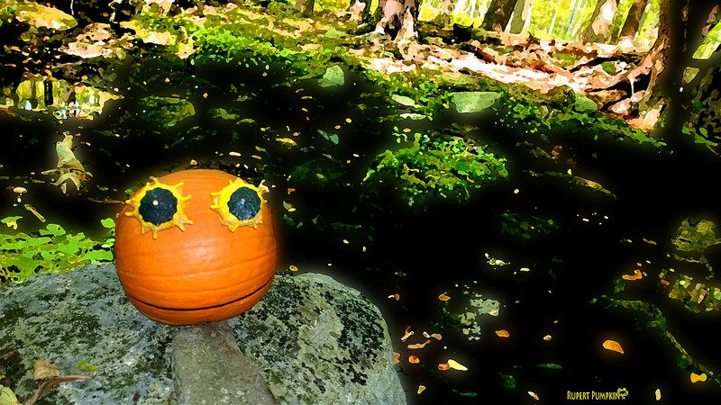 The Tao of Rupert Pumpkin