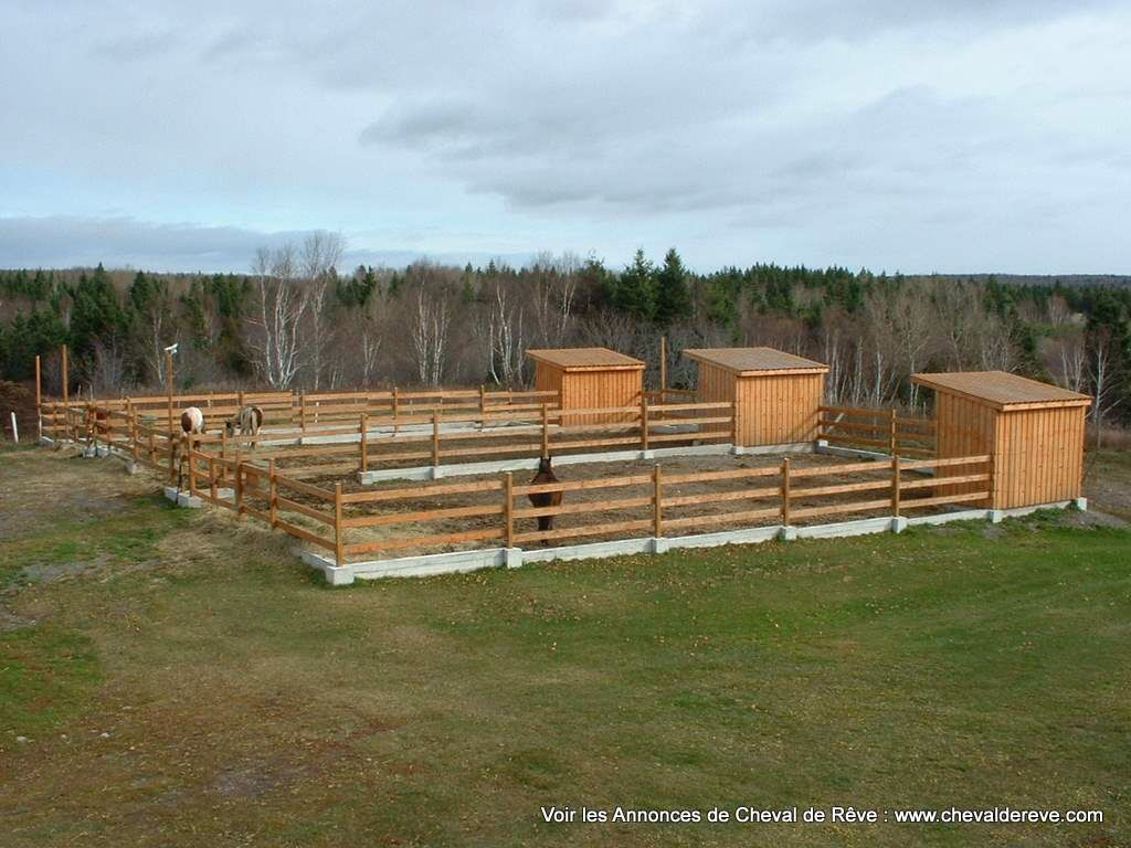 Individual Horse Turnout Paddocks And Run In Shelters