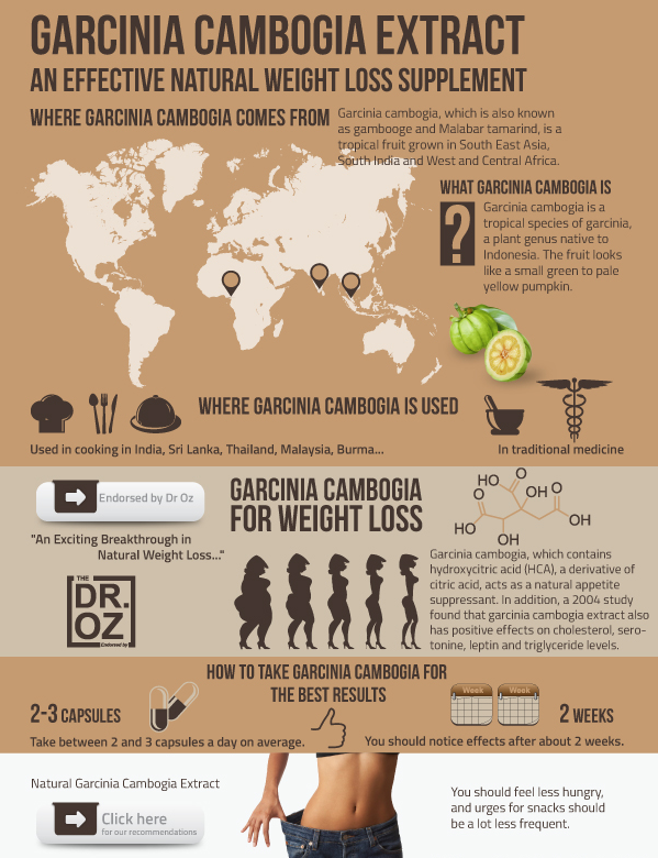 How Long Does It Take To Lose Weight Weight Watchers
