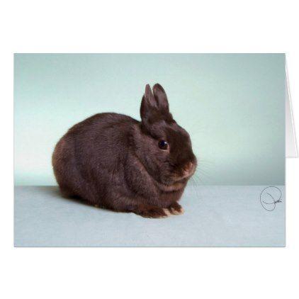#professional - #Cisero: Mr. Chocolate! Card