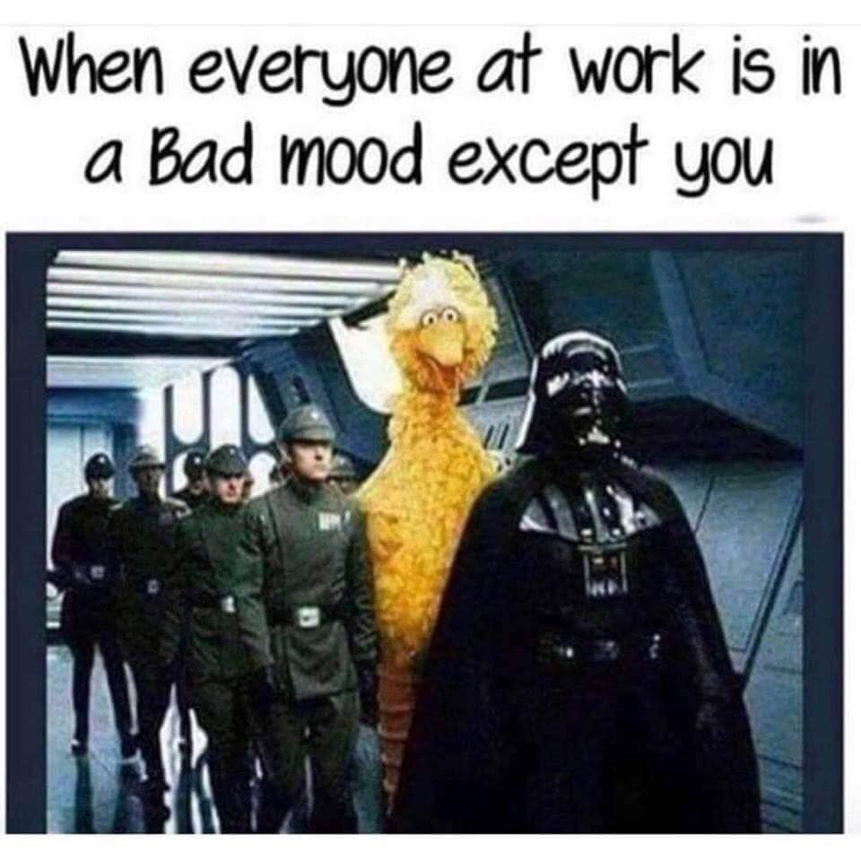 So Excited To Come Back To Work After A Week Long Vacation Said No One Ever Back To Work After Vacation Vacation Humor Vacation Meme