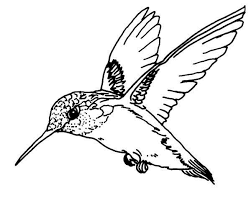 Bilderesultat for flying birds coloring page