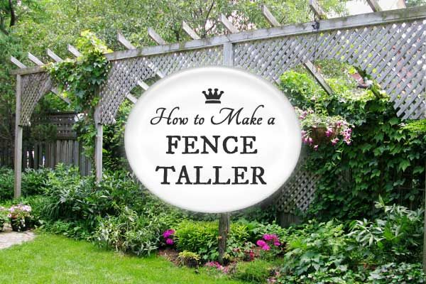 How to Make a Fence Taller for Better Privacy | Backyard ...