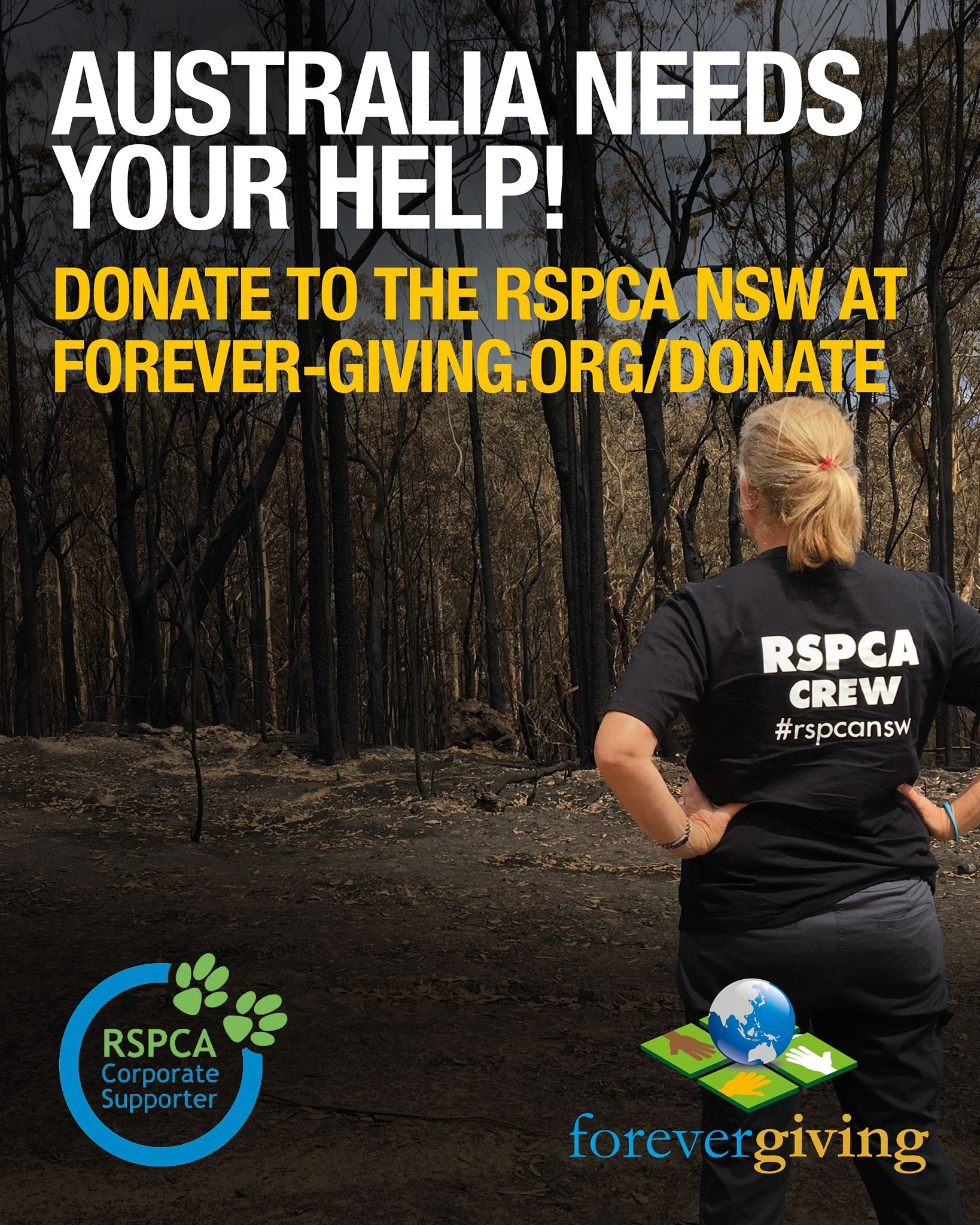 Help Australia Animals Affected by the Fires in 2020