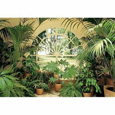Poster Mural Geant Jardin D Hiver 366 X 254 Cm Jardin D Hiver Jardin Interieur Amenagement Jardin