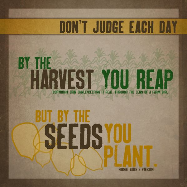 Ag Quote The Seeds You Plan Drive Livestock Youth Magazine Www.drivelivestock .