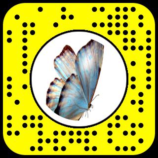 Snap To Unlock Snapchat Snapchat Snapchat Filters Butterfly