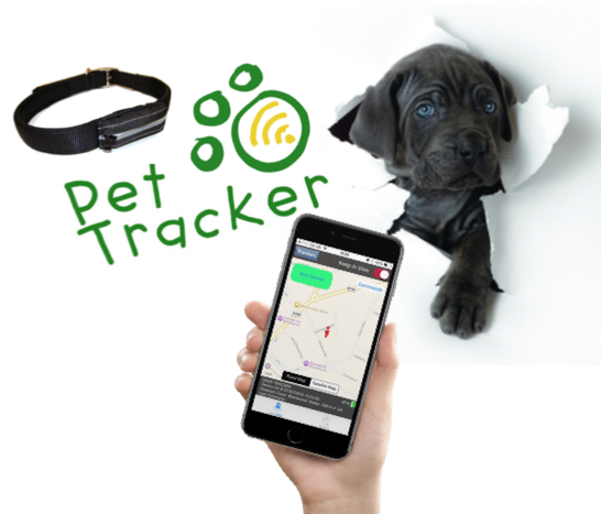 THE BEST GPS PET TRACKER Pets, Your dog, Your pet