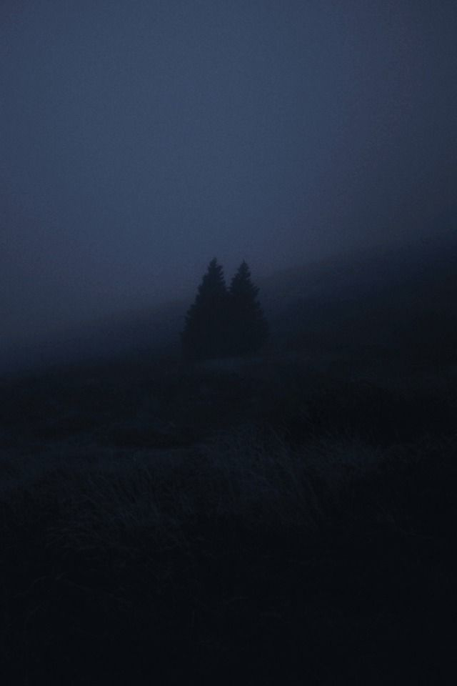 In The Night In The Dark Aesthetic Artists Creepy Dark Dreary Eerie Field Forest Landscape Lensblr Mountain Nature Night Notes On Original 2020