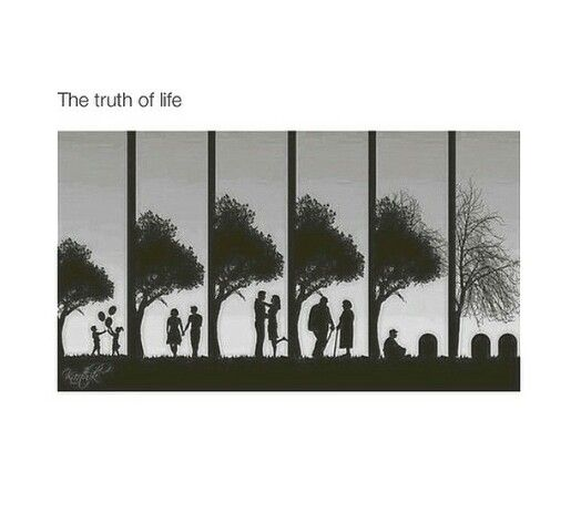The truth of life