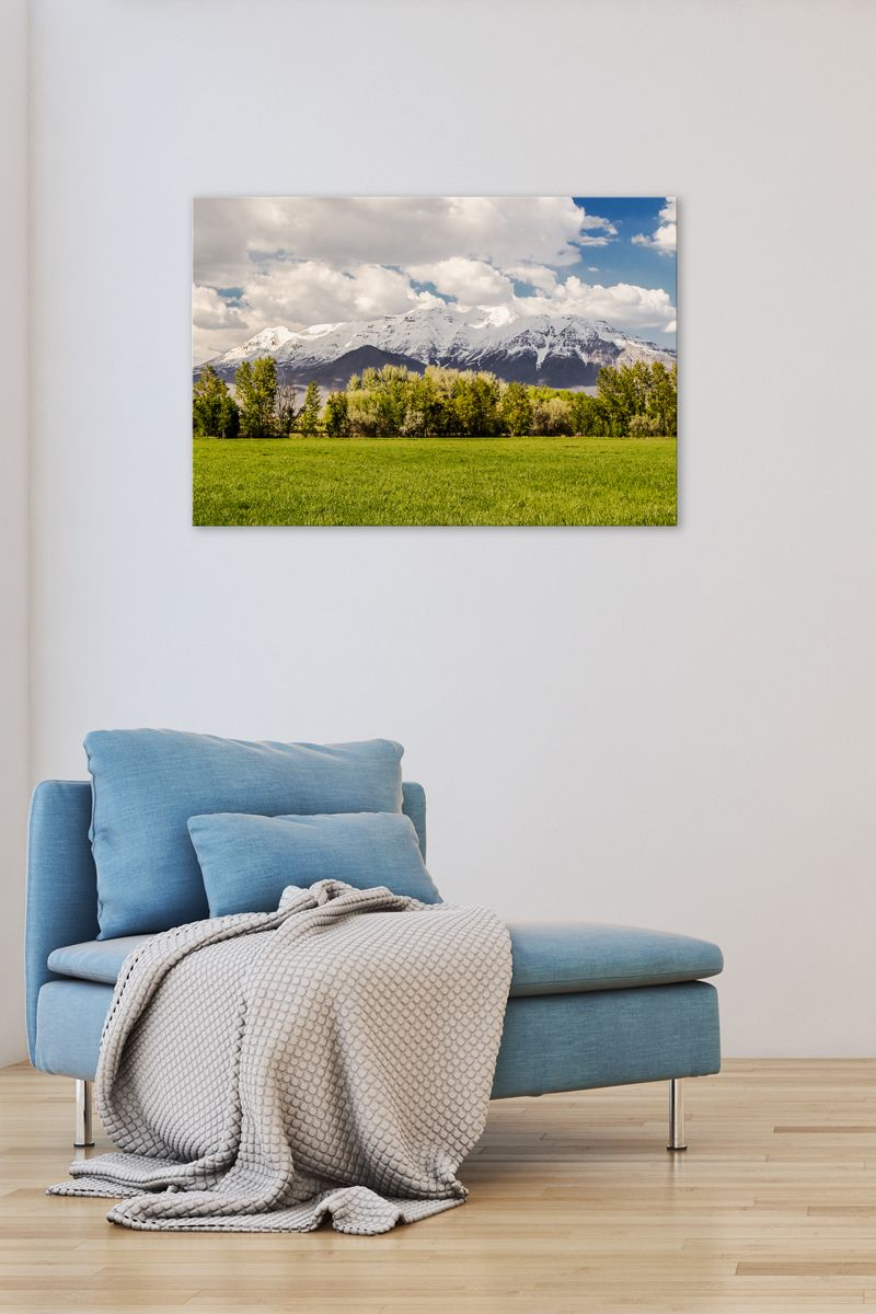 Timpanogos spring canvas wall artgallery wrap canvas by rogue