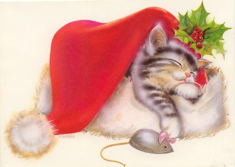 cat sleeping in santa s hat christmas card m p 759 x 541. Black Bedroom Furniture Sets. Home Design Ideas