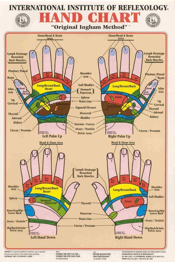 Detailed Hand Reflexology Map Manual Guide