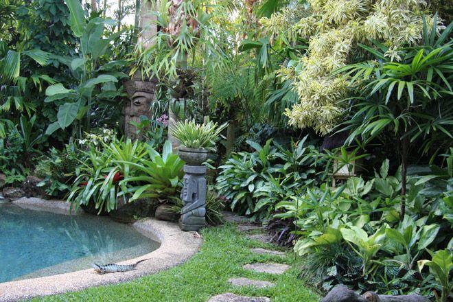 tropical garden by dennis hundscheidt  stunning garden on a 1  4 acre block