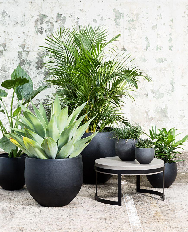 Maui stone planter - Pots & planters - OUTDOOR | Papaya Simply
