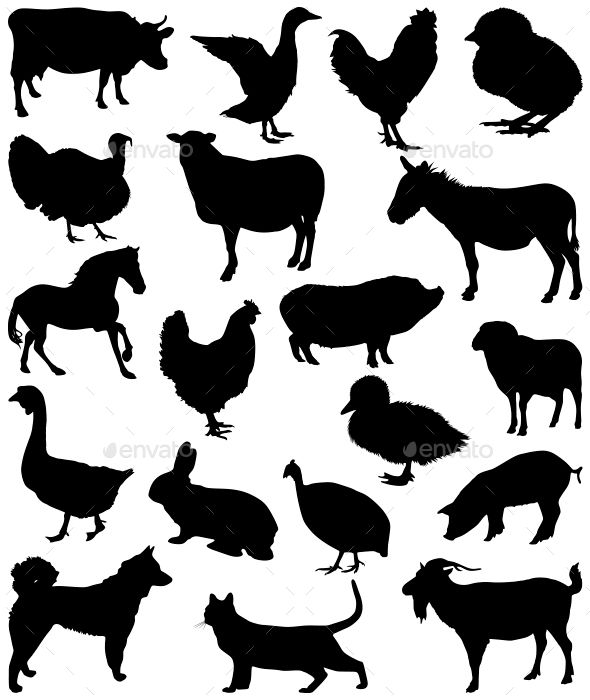 Farm Animal Silhouettes Graphic Free Download Download Now Nulled Farm Animal Silhouettes Free Downloa Animal Silhouette Rabbit Silhouette Silhouette Painting