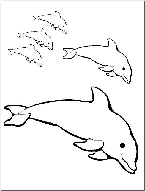 Free Printable Dolphin Coloring Pages For Kids | coloring ...