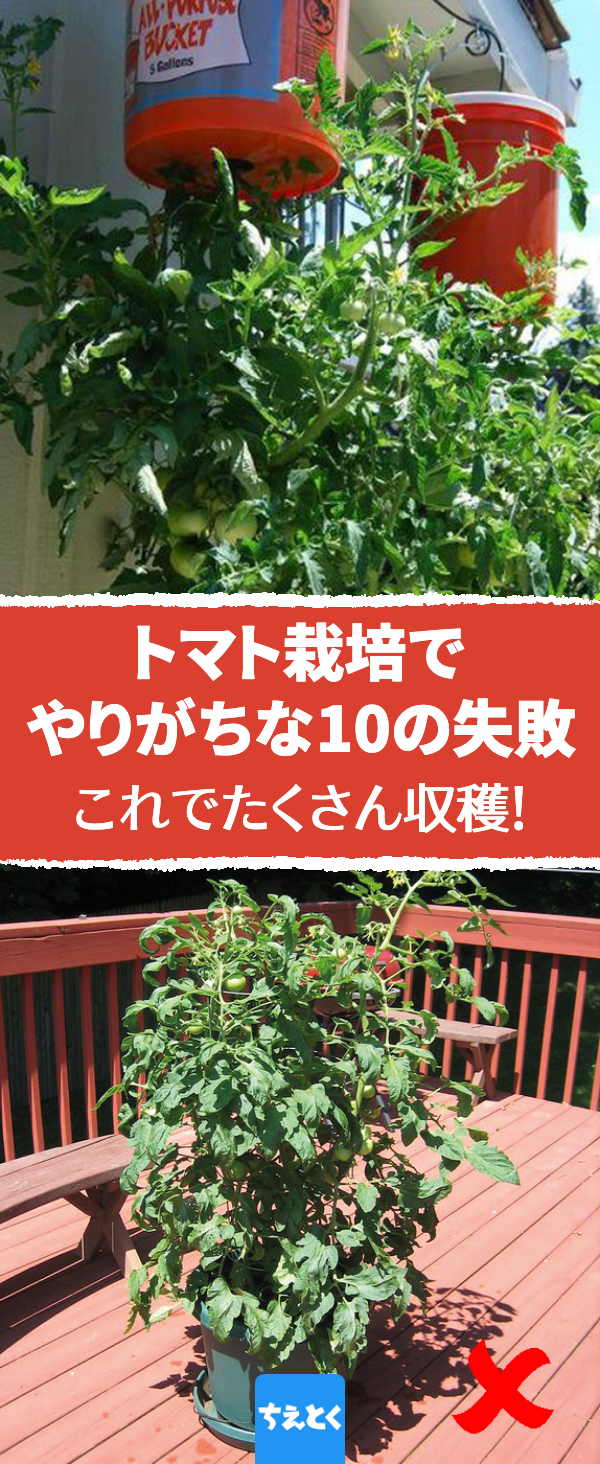 ボード Garden のピン