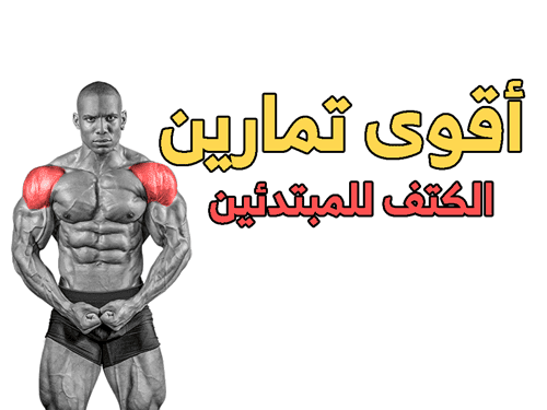 تمارين الكتف للمبتدئين Shoulder Workout Workout For Beginners Shoulder
