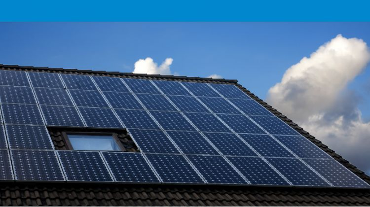 CEFC invests AU100 million in Australian Renewables