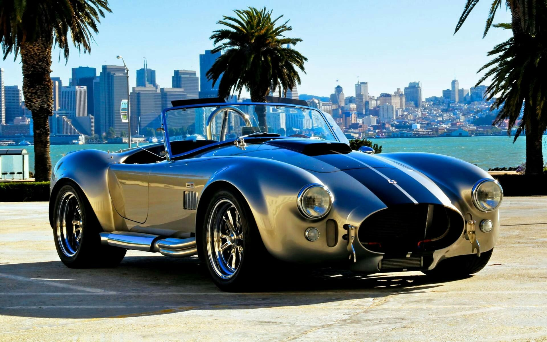 Murdered out shelby cobra yo kokeile n it pinterest cars ac cobra and sports cars