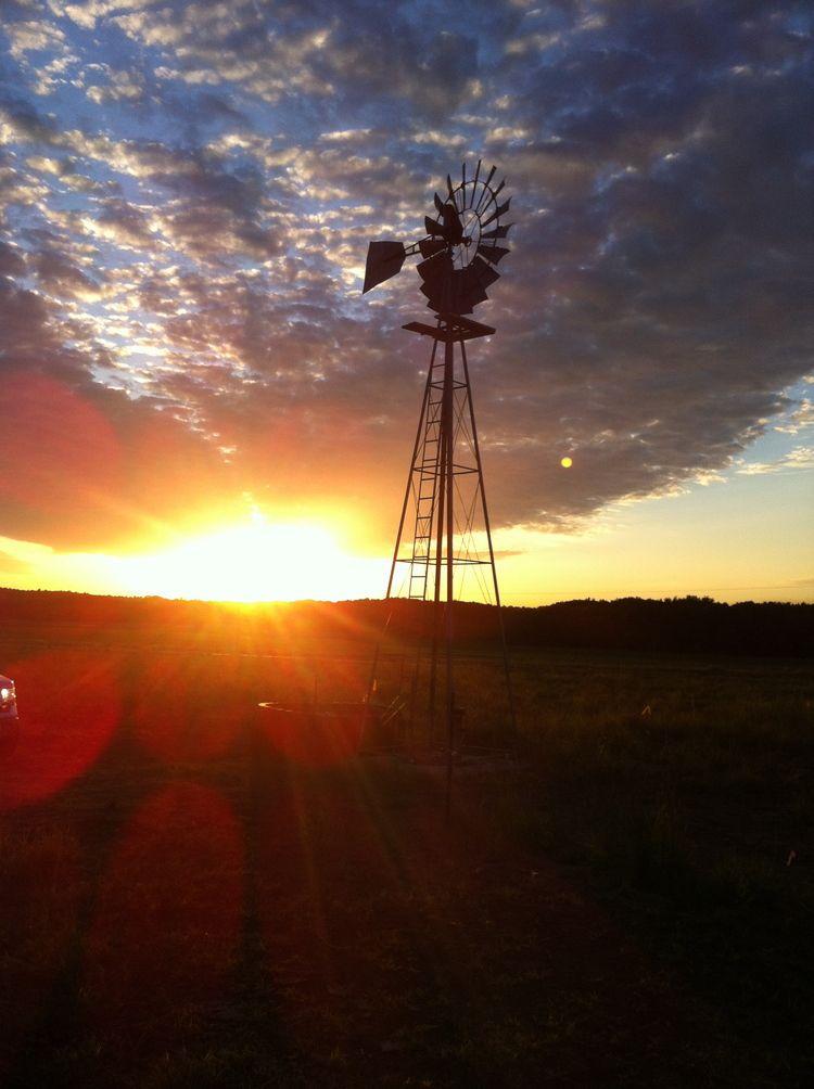 IMG_6282.jpg | Grain bin house, Earth projects, Windmill