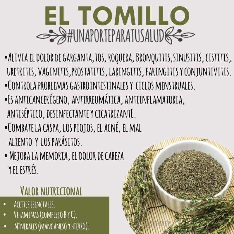 Hierbas Curativas Herbolaria Remedios Naturales