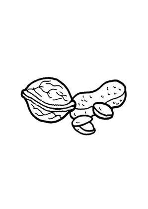 Malvorlagen Fur Erdnusse Ausmalbilder Nsse Obst Und Gemse Malvorlagen Ideen