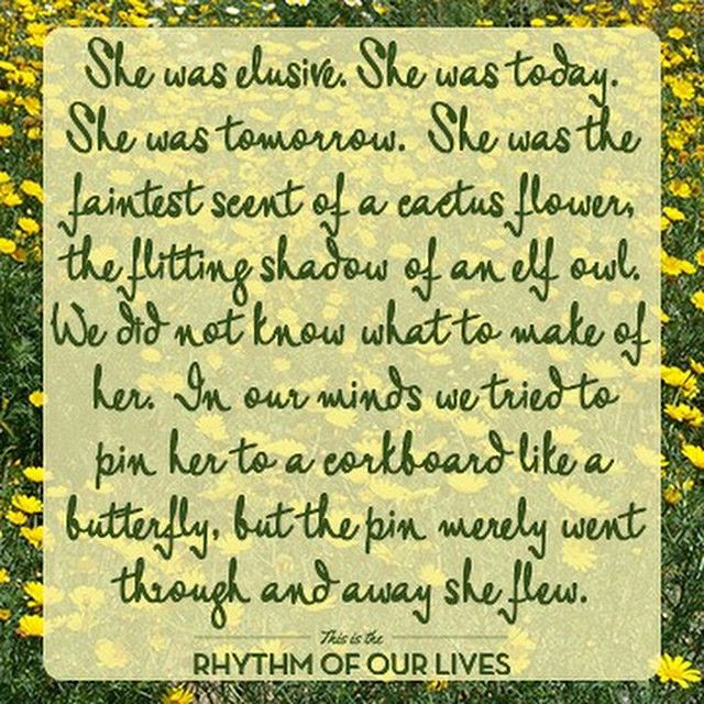 Love this passage from Stargirl, one of my favorite childhood books. - Rhythm of Our Lives Blog @ RhythmofOurLives.com