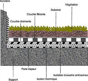Int r t des toitures v g talis es pour la gestion des eaux pluviales une synth se - Coupe toiture vegetalisee ...