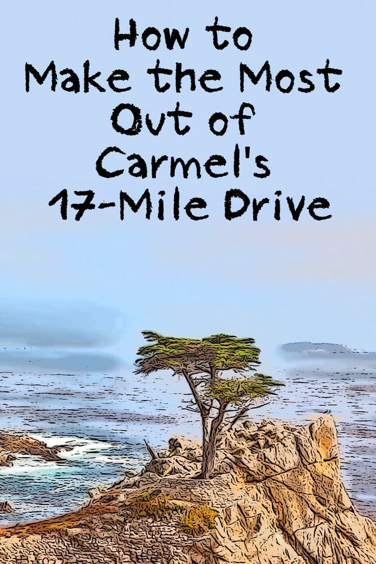 What Should You Stop To See On Carmel S 17 Mile Drive California Travel Road Trips California Coast Road Trip California Travel